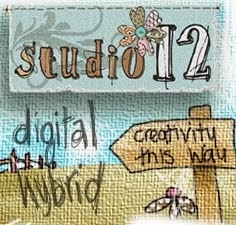 Buy Studio 12 products here ...