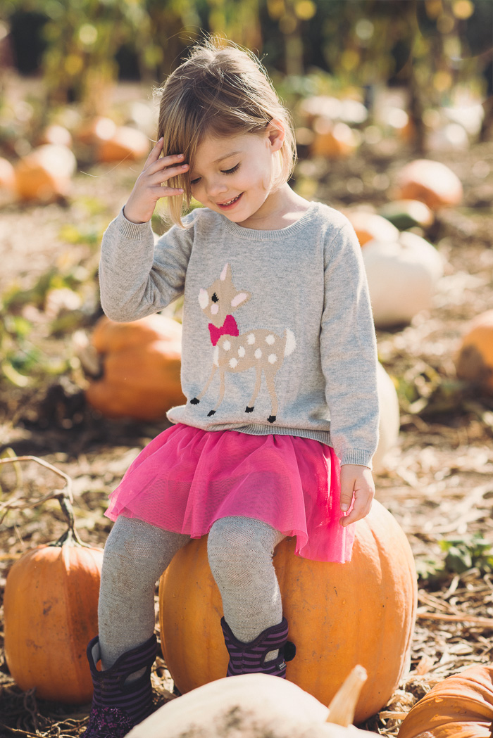 pumpkin patch photos