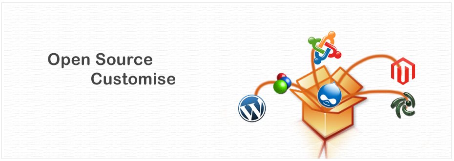 Wordpress Website development Surat