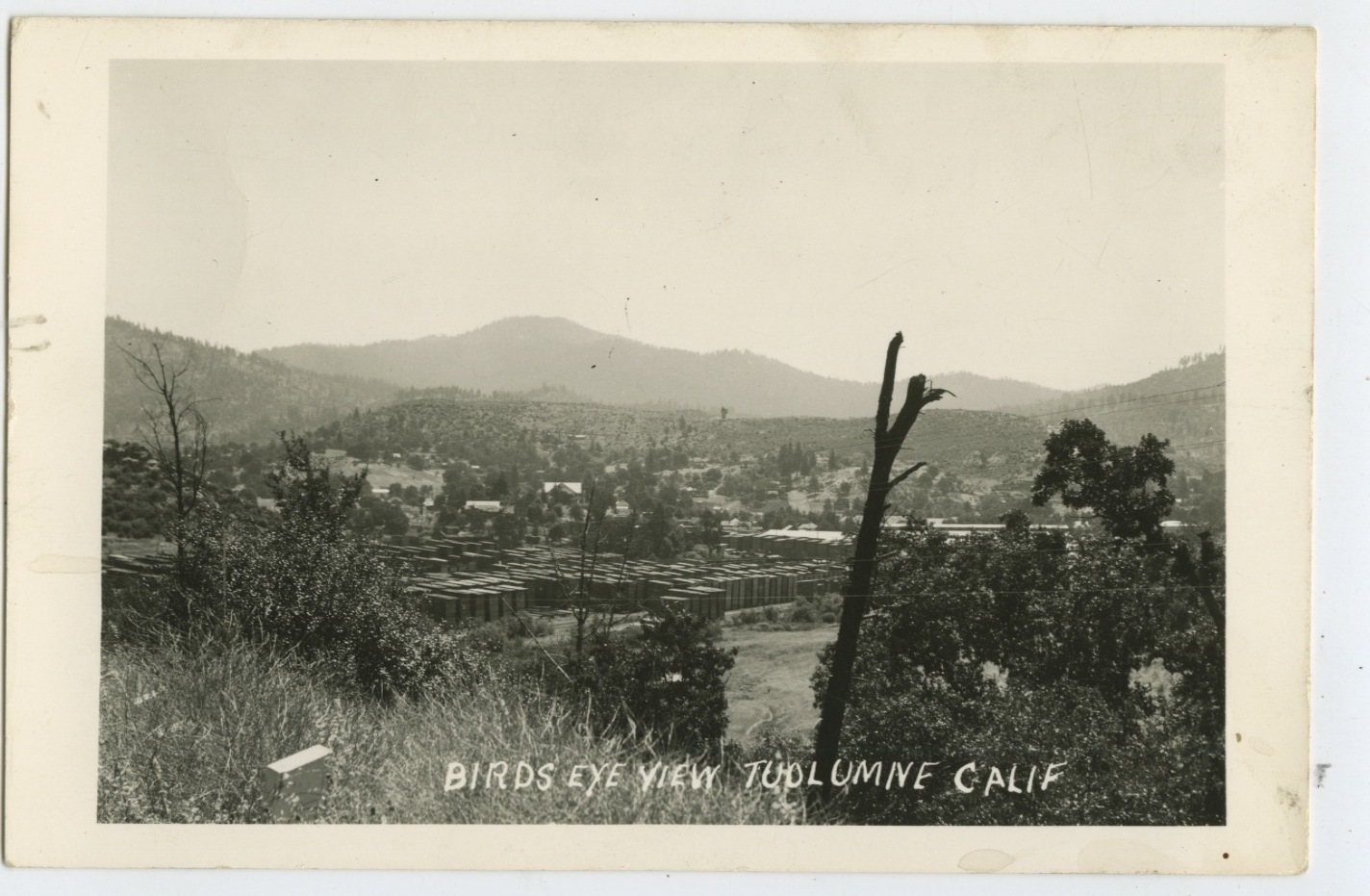 gold country girls: Just a Few Jamestown and Tuolumne City