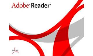 adobe reader 11.0