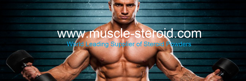 muscle-steroid website