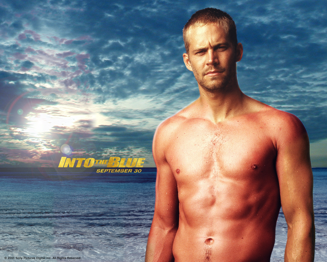 http://2.bp.blogspot.com/-b_sF8PfLISU/Ta6t9MOyUyI/AAAAAAAABME/vmBUAlK0bOo/s1600/Paul_Walker_in_Into_the_Blue_Wallpaper_5_1280.jpg