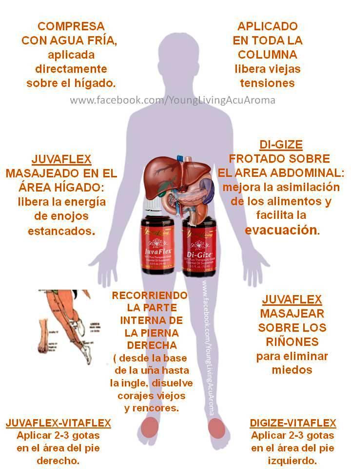 Aceites Esenciales Young Living Acu Aroma Pilar Garibi
