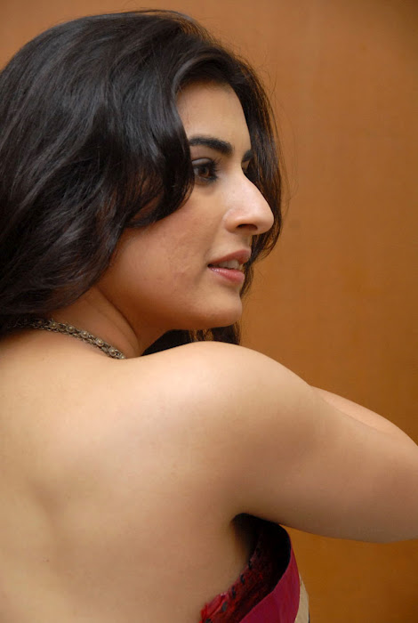 Archana Veda in Saree Wallpapers