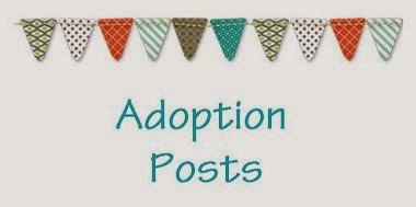 All About Abby's Adoption