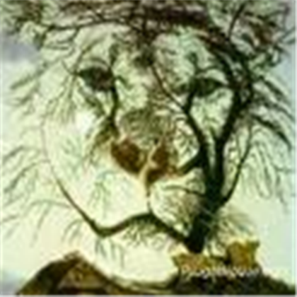 lion tree optical illusion