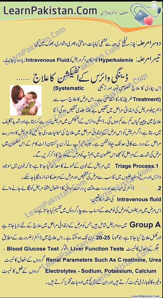 an essay on dengue fever in pakistan