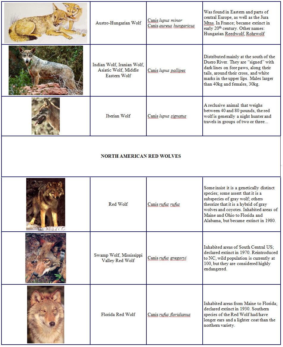 Species and Subspecies Sp+next+2+last