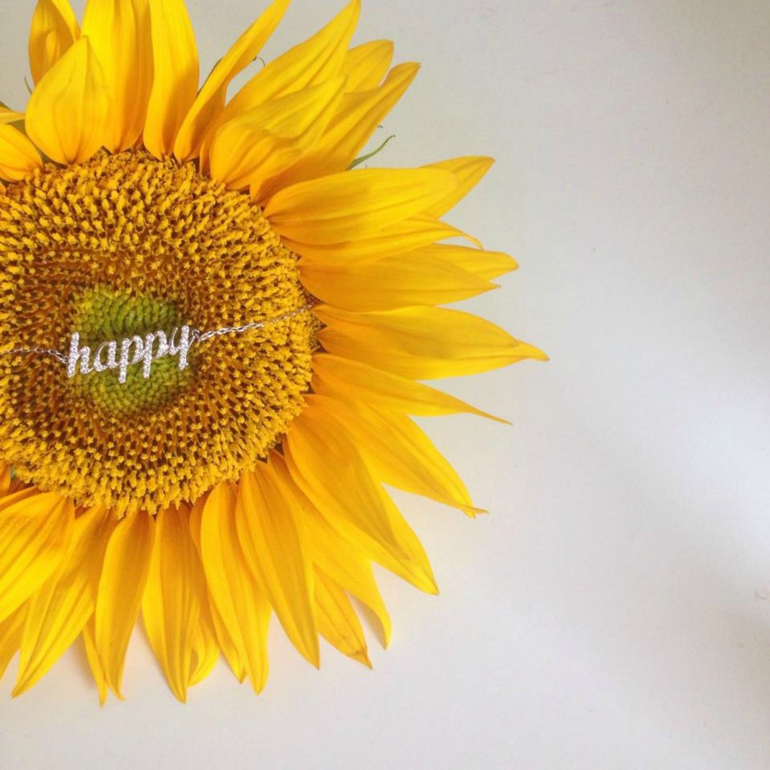 be yellow happy and bright with melkior monica u0027s beauty in five
