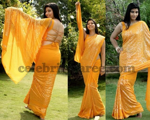 Sara Sharma Back Neck Blouse