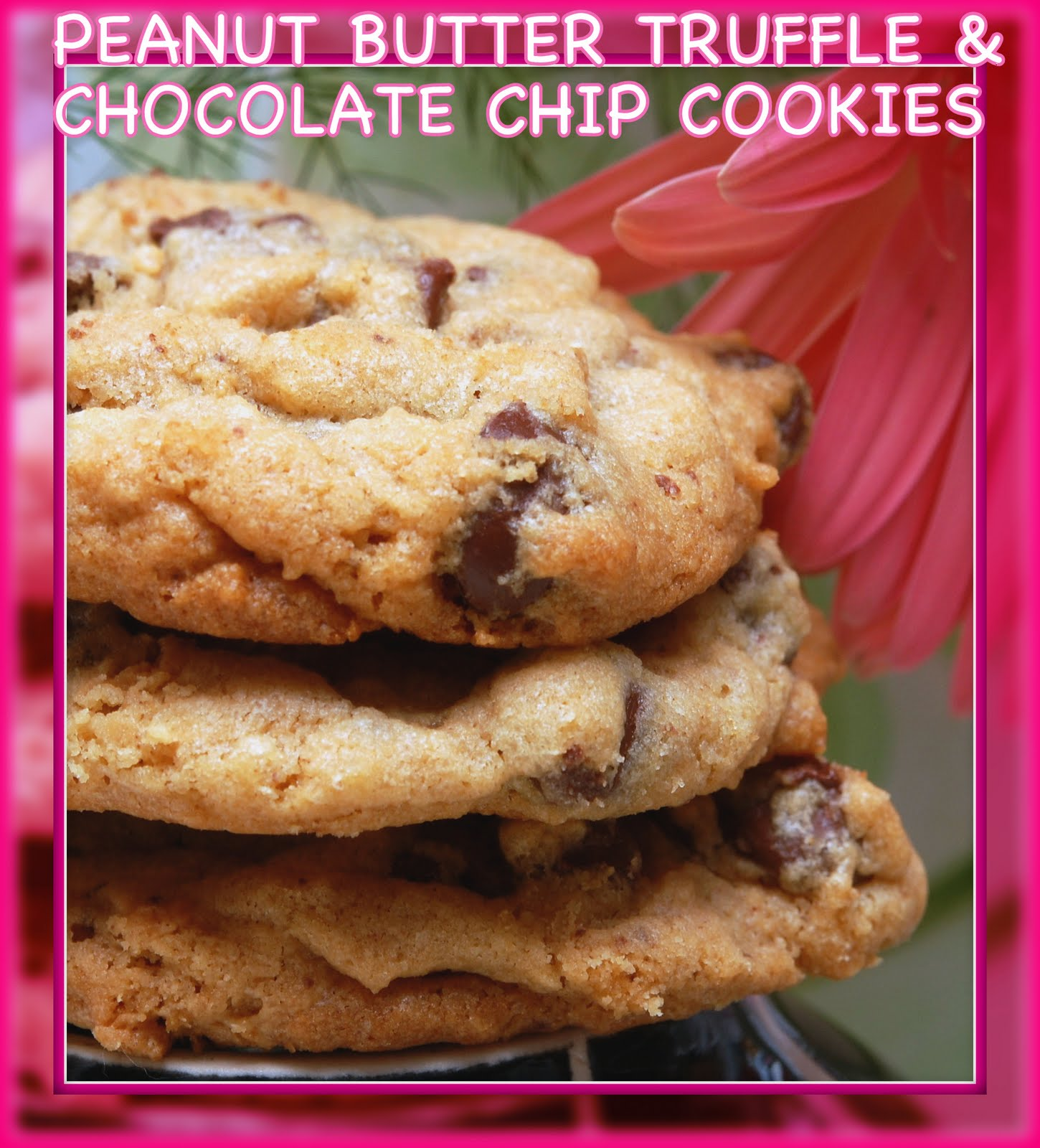 Chocolate Chip And Peanut Butter Truffle Swirled Cookies Recipes ...