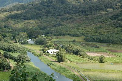 The village of Hanalei, Kauai