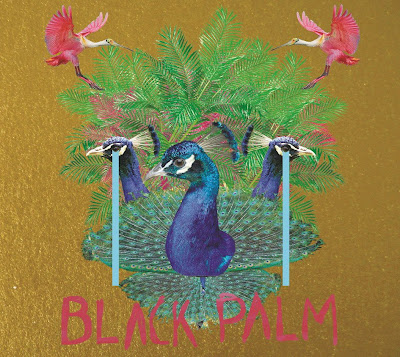 band italiana Vertical funk album Black Palm
