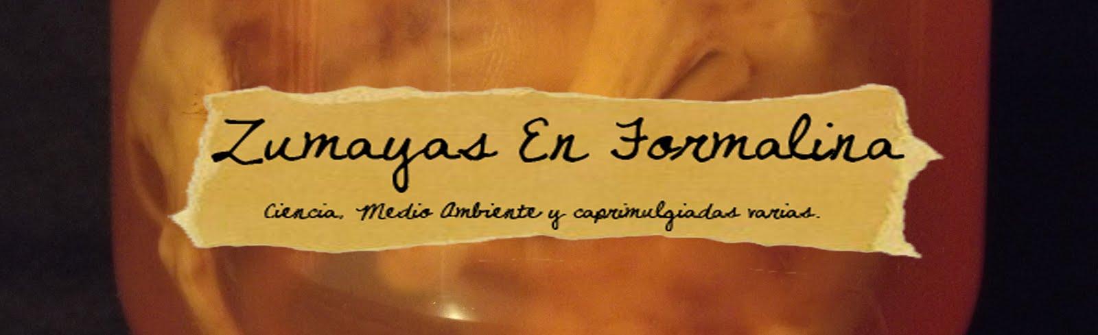 ZUMAYAS EN FORMALINA