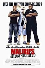 Watch Malibu's Most Wanted 2003 Megavideo Movie Online