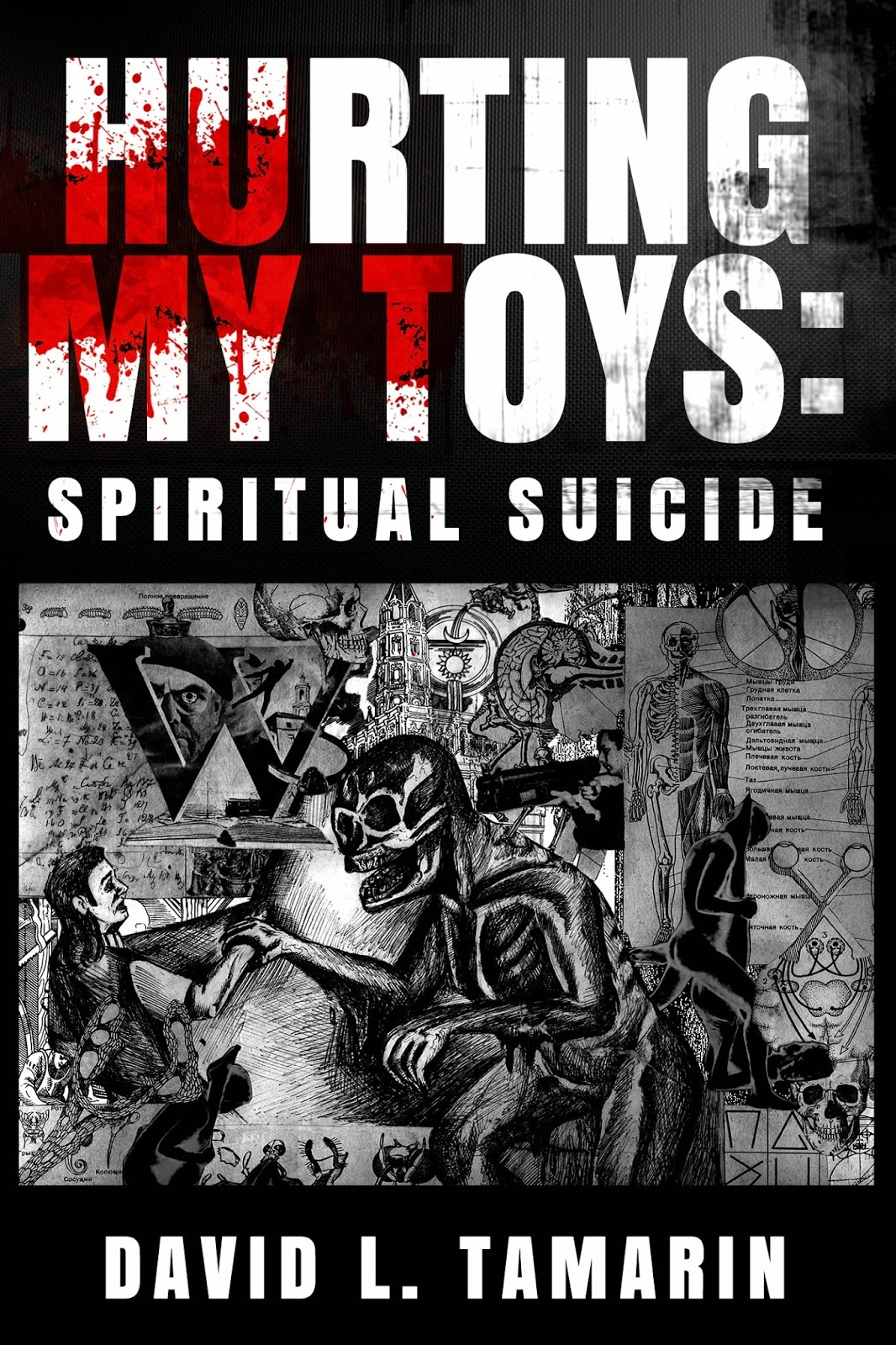 Cover of Hurting My Toys