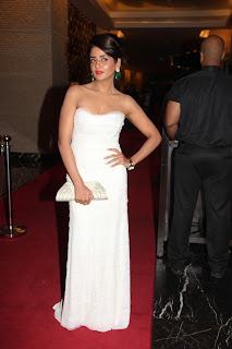 Parul Gulati Picture Gallery at SIIMA 2013 Awards