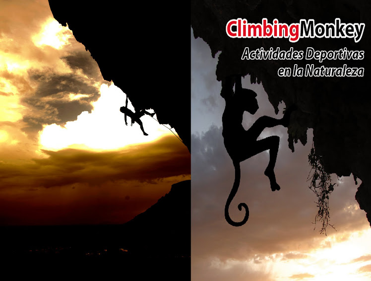 ClimbingMonkey