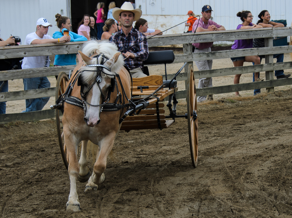 geauga county single men Geauga county sheriff's deputy gary kracker makes sure amish  young amish  men and women are drinking, then getting into buggies to drive home  after  stopping the black buggy pulled by a single horse, they find what.