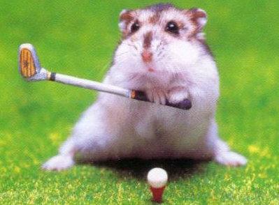 dangerous golf 1.2
