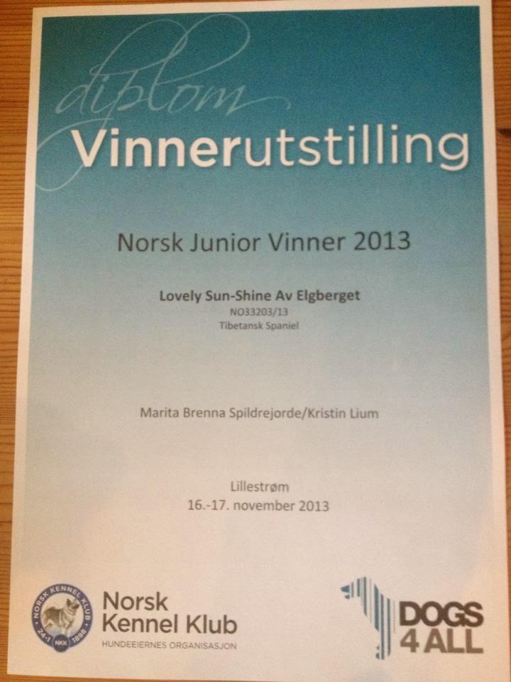 Norsk Juniorvinner 2013