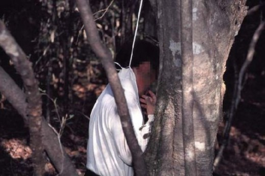 mayat di hutan Aokigahara