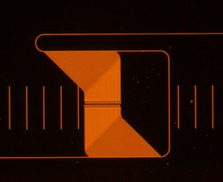 Microspectrometer Micrograph