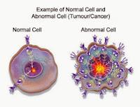 Obat Tumor Jinak