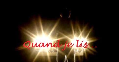 http://faurelixlit.blogspot.fr/2014/10/mauvaise-etoile-de-rj-ellory.html
