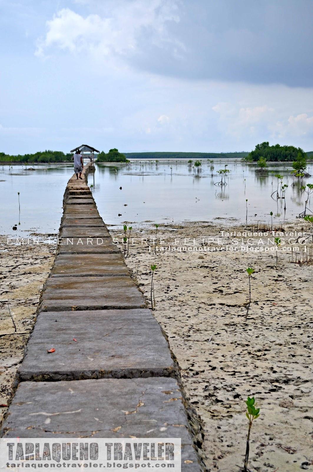 Toward the viewdeck of Olango Island Wildlife Sanctuary
