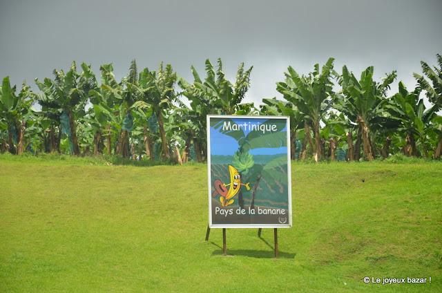 Martinique - pays de la banane