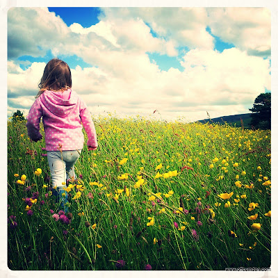 Walking through a meadow