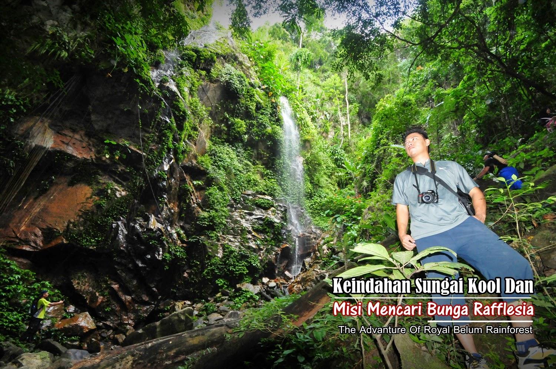 Perak Trips Keindahan Sungai Kool Dan Misi Mencari Bunga Rafflesia