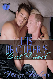 His Brother's Best Friend (The Wrong Bed 2)