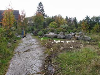 trädgårds anläggning