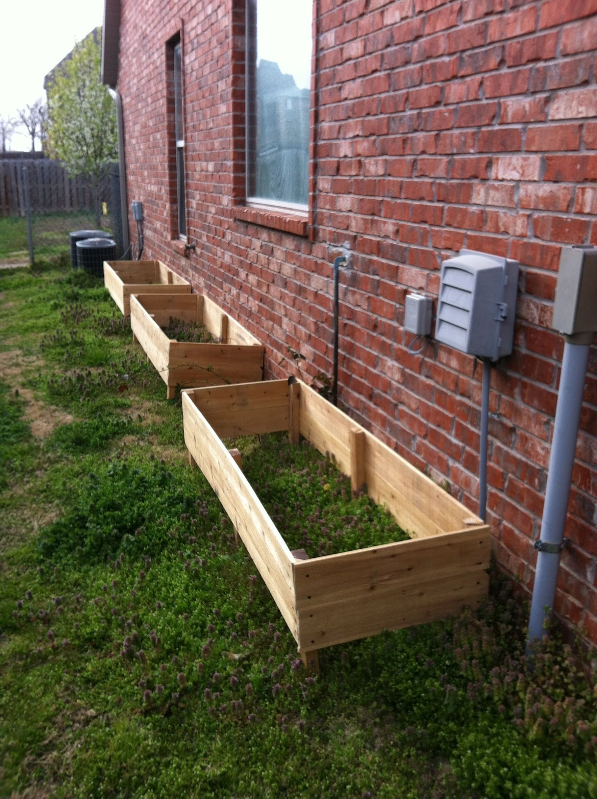 The Vintage Butterfly Cedar Raised Garden Beds on the Cheap