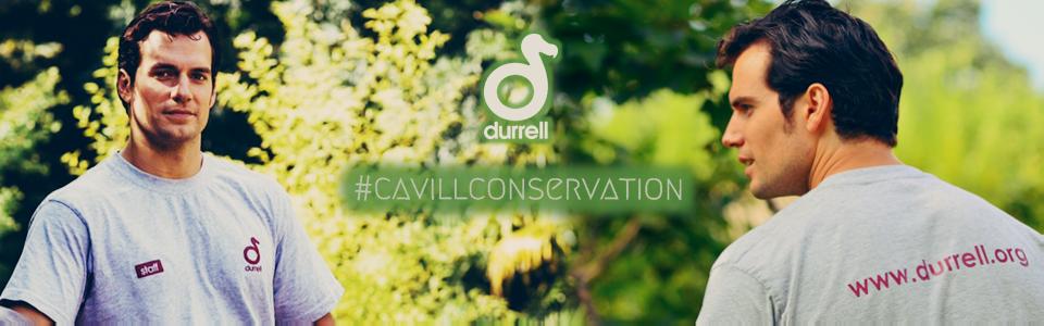 CavillConservation & Durrell