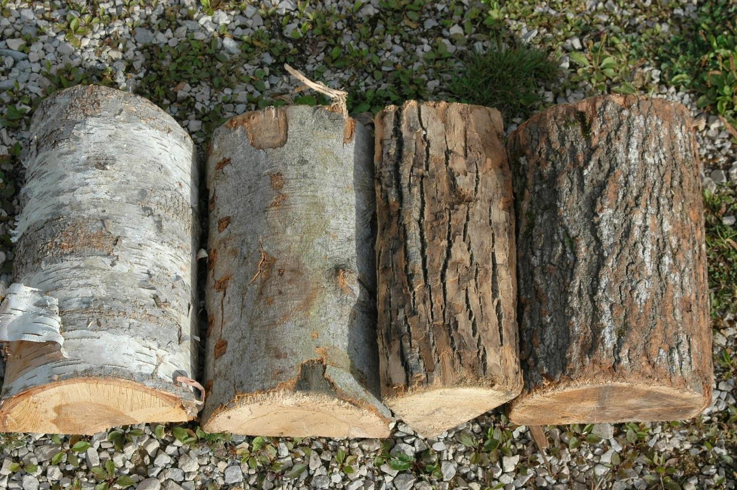 Roche fleurie garden firewood