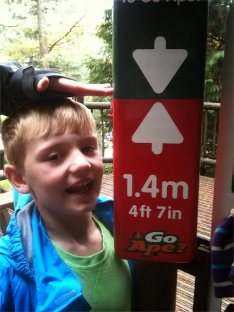 Go Ape Whinlatter Height
