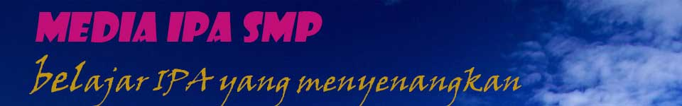 Media IPA SMP