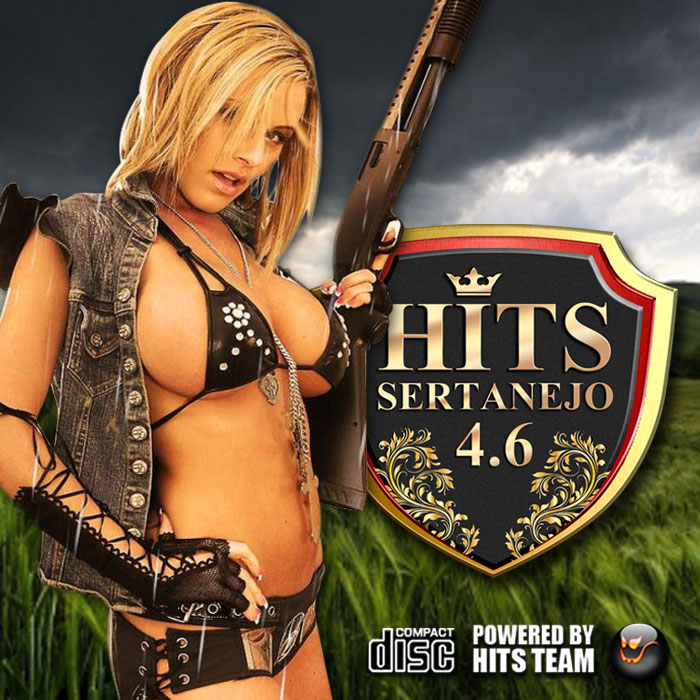 Hits Sertanejo - 4.6