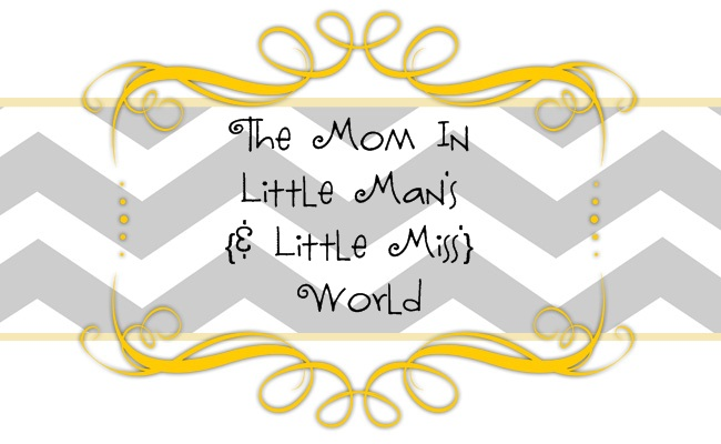 The Mom in Little Mans World