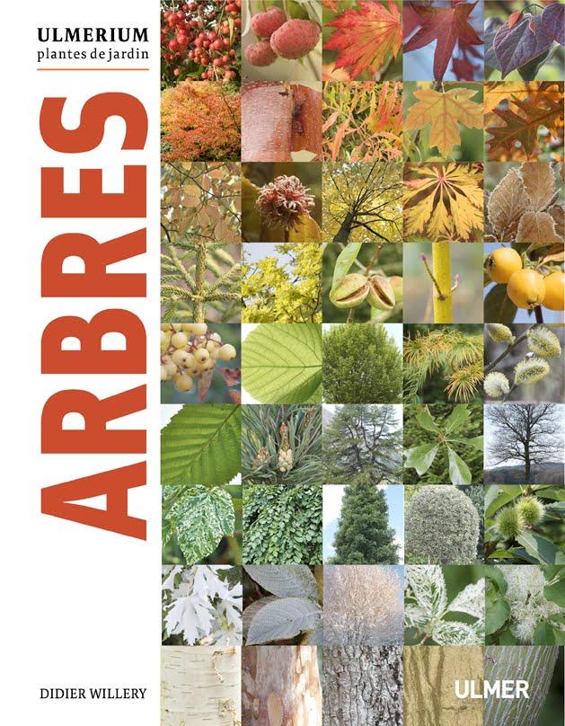 Ulmerium/ARBRES