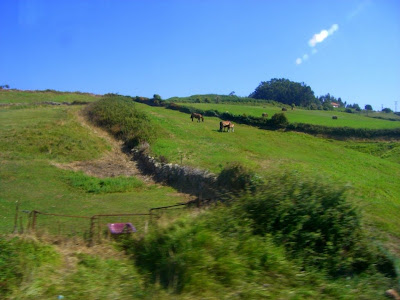 Landscape of Cantabria