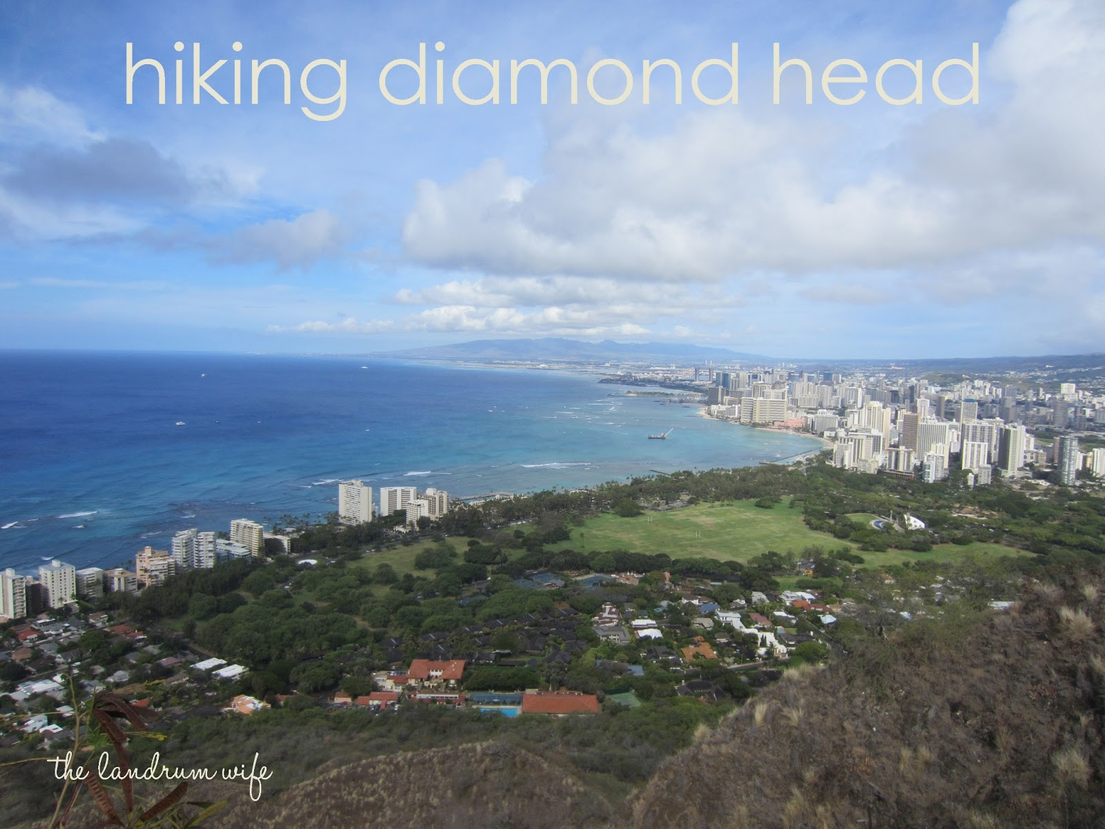 Diamond Head Dog Park