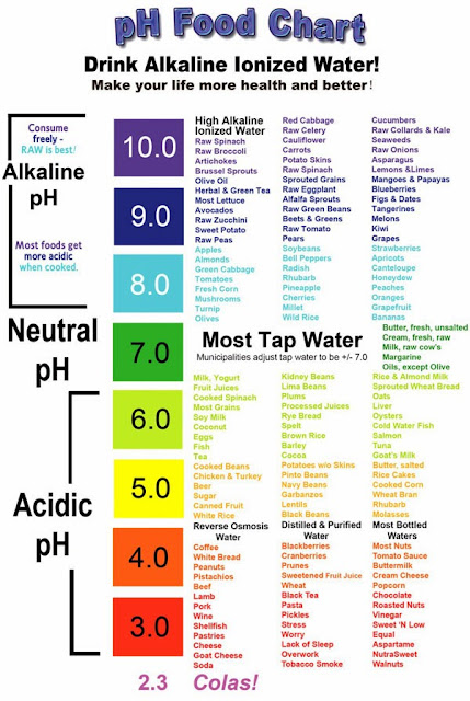 the joy of food the alkaline way guide