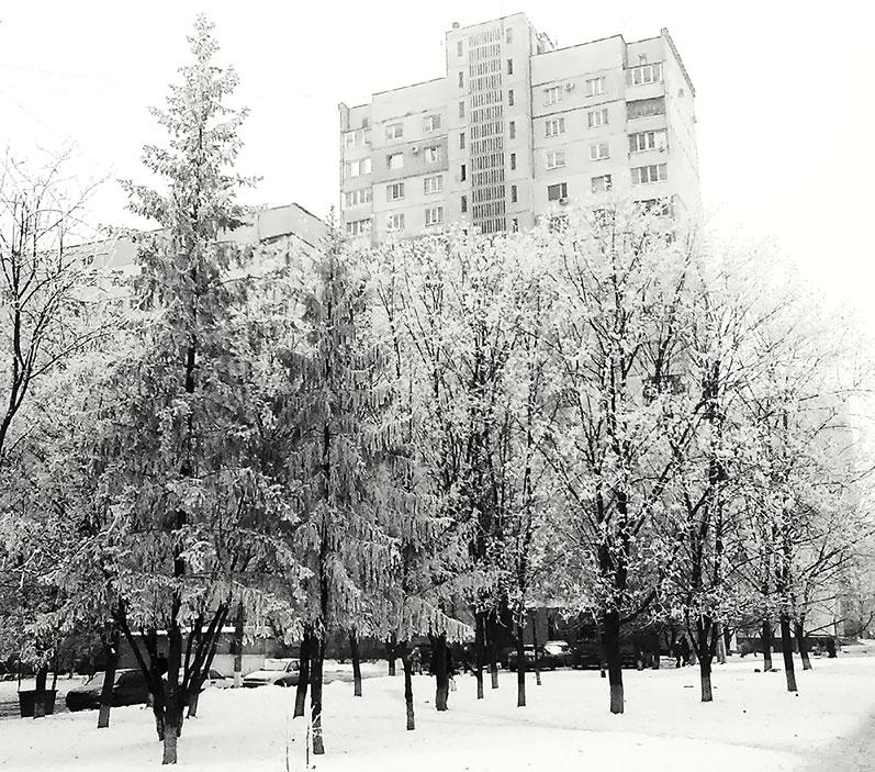 деревья заснеженные аллея елки пушистые кружево снежное Ro-Ksana.blogspot.com бисероплетение украшения бисера натуральными камнями хендмейд бижутерия подарки  женщине handcrafted