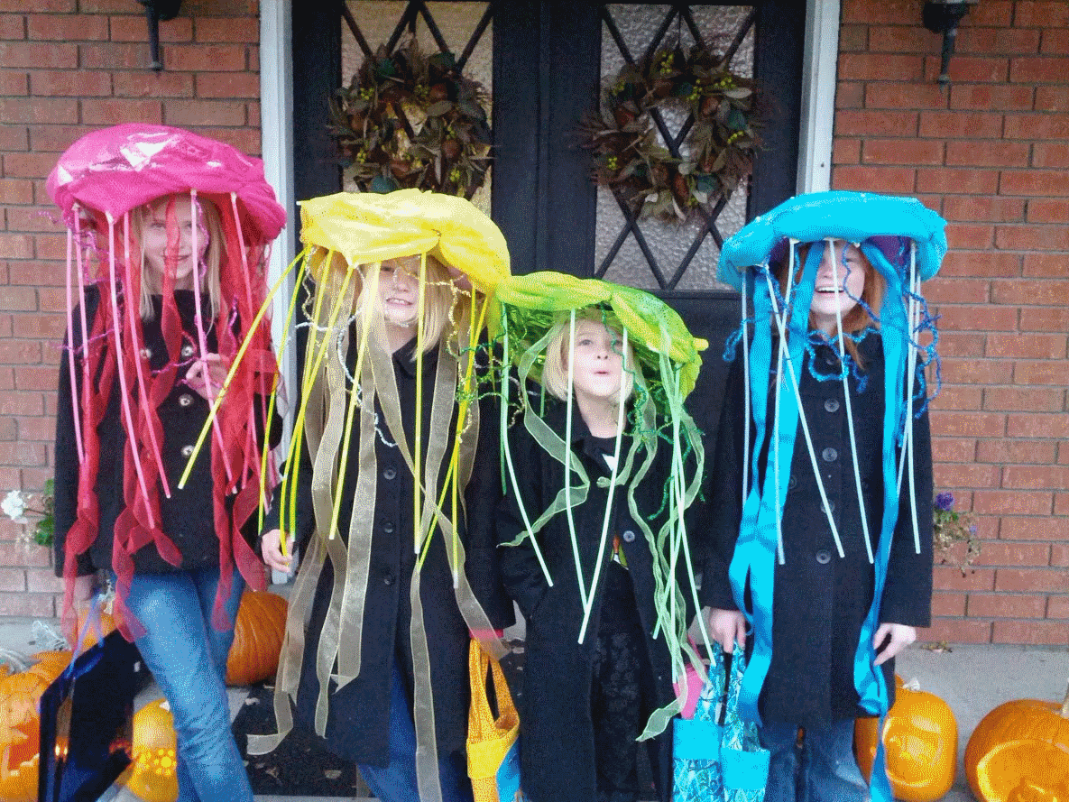 Greg  amp  Heather s Family BlogJelly Fish Costume