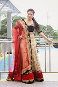 Nikesha patel glamorous photos-thumbnail-17